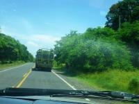 Transportatio